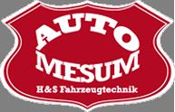 Auto-Mesum